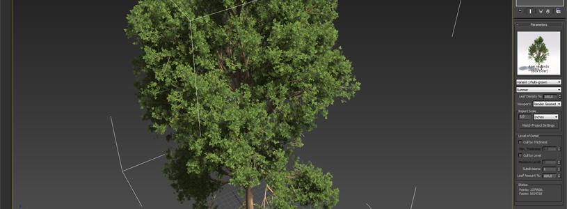 Laubwerk Player for 3ds Max 2012 Screenshot