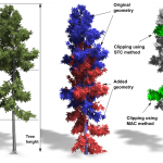 Capturing and Animating the Morphogenesis of Polygonal Tree Models
