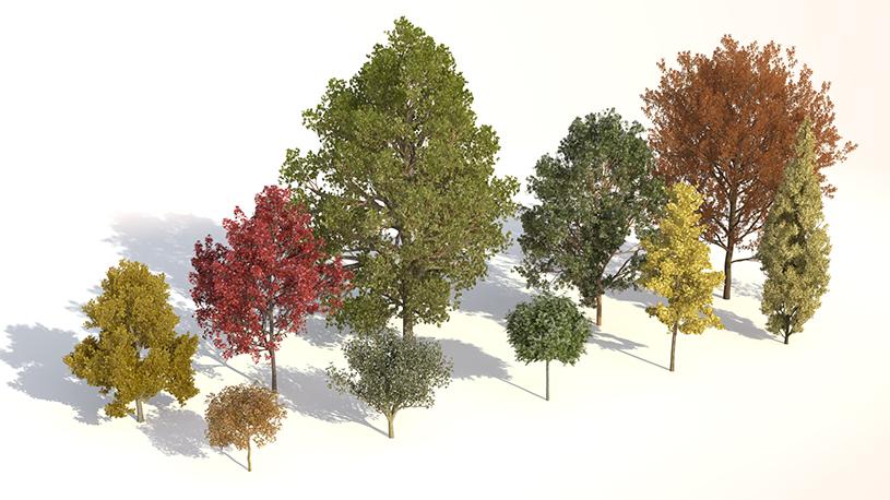 Rendering of variations of Laubwerk Plants Kit 1 trees by Jan Walter Schliep using CINEMA 4D and VRAYforC4D