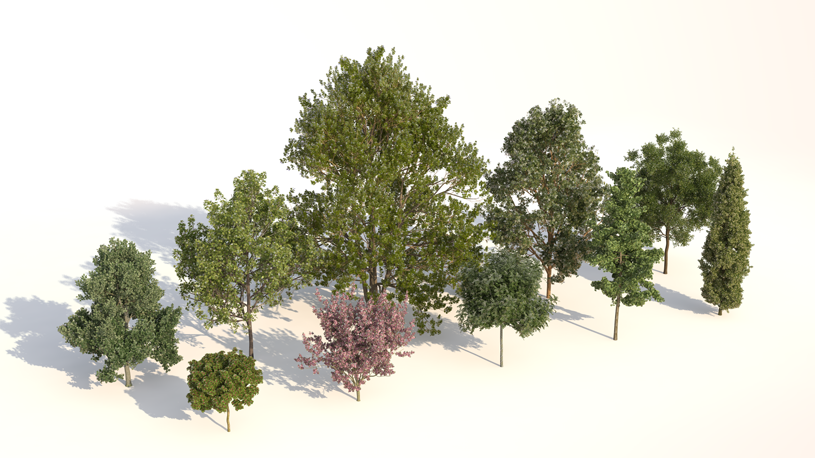 Rendering of variations of Laubwerk Plants Kit 1 trees by Jan Walter Schliep using CINEMA 4D and VRAYforC4D