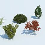 Laubwerk Plants Kit 8 - autumn example (CG artwork by Mario Kelterbaum using Cinema 4D and Otoy OctaneRender)