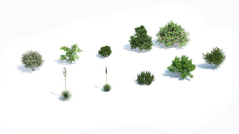 Laubwerk - Plants Kit 12 for 3ds Max, Maya, Cinema 4D