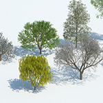 Kit 10 - trees in a row in spring- rendering by Mario Kelterbaum using Cinema 4D and V-Ray