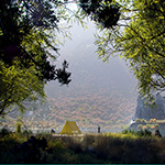 The Lake in Fall (artwork by Thomas Vournazos, Slashcube, using CINEMA 4D, Corona Renderer, Plants Kit 13)