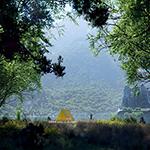 The Lake in Summer (artwork by Thomas Vournazos, Slashcube, using CINEMA 4D, Corona Renderer, Plants Kit 13)